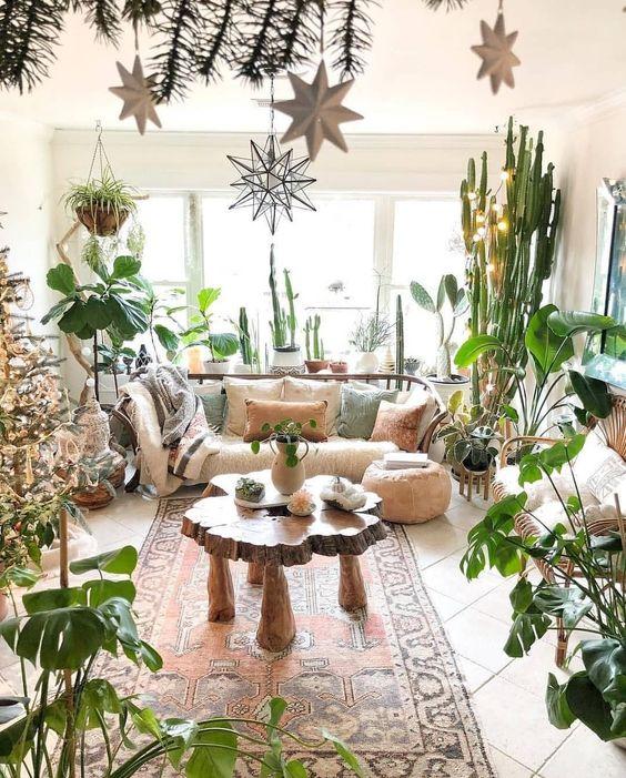 salon avec plantes dinterieur